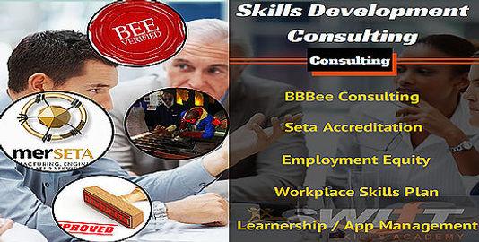 skills development consulting