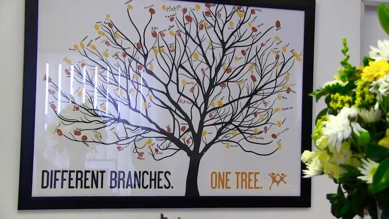 One Tree... Different Branches.