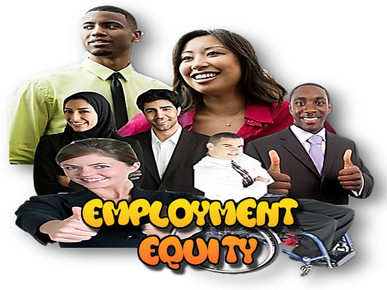 employment equity consulting cape town