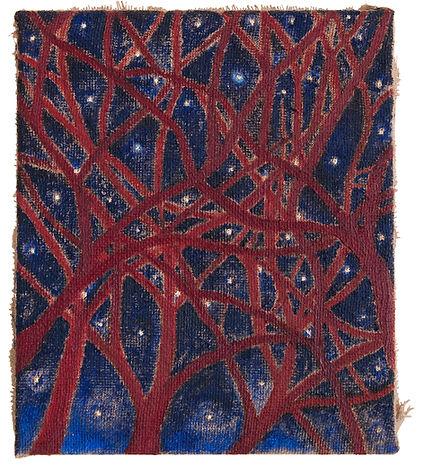 DCM, Caminando entre arboles y estrellas