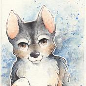 Pet Commission: Haylo