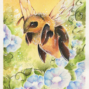 Illustration Commission: Honey Bee with Morning Glory