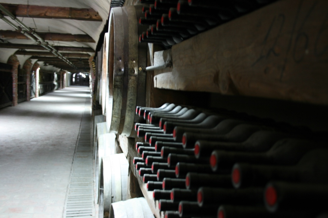 Winery in Kakheti