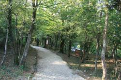 Sataplia Reserve
