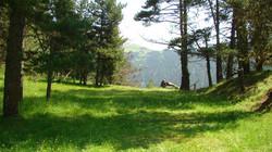 Tusheti Protected Areas