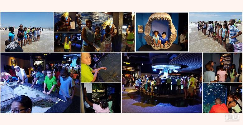 Collage 2016-08-02 09_18_20.jpg