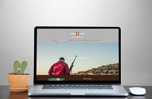 TDR-portfolio-laptopwebpage.png