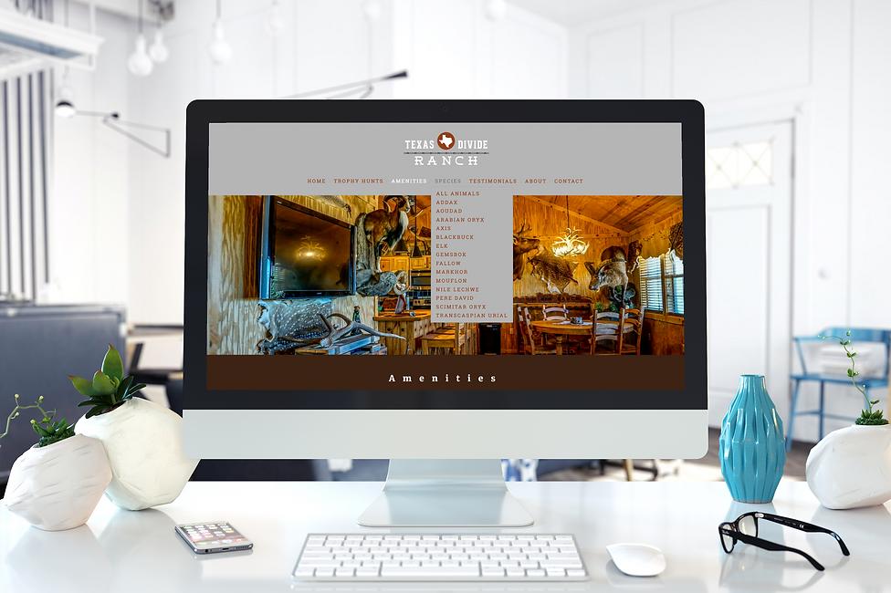 TDR-portfolio-webpage.png