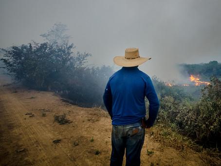 Agro é fogo: Queimadas são crimes do agronegócio!