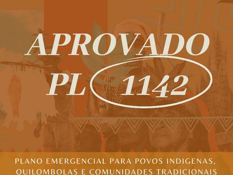 COVID-19: Senado aprova plano emergencial para povos tradicionais e texto segue para sanção