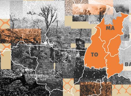 Matopiba: institucionalização da grilagem é tema de estudo lançado na próxima semana