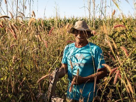 Articulação Matopiba, da Campanha em Defesa do Cerrado, se reúne com Fórum de Corregedores