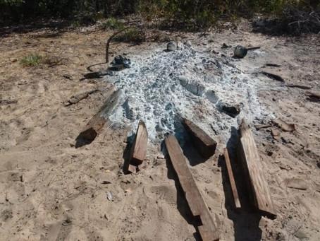 Correntina (BA): Fecho de Pasto de Vereda da Felicidade  sofre mais um ataque de grileiros