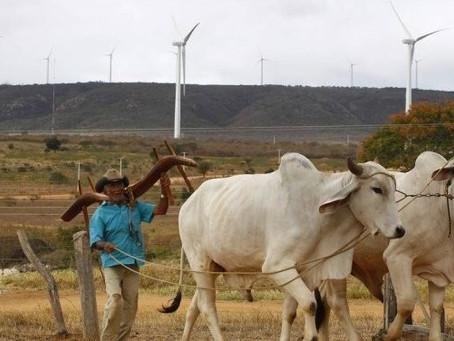 BAHIA: Organizações publicam análise da IN 01/2020 sobre os corredores de vento