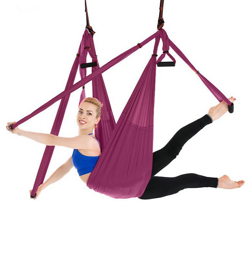 Paarse Yoga Swing