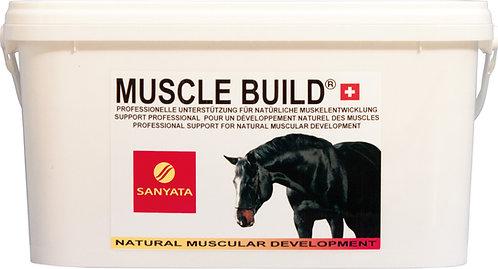 Sanyata MUSCLE BUILD