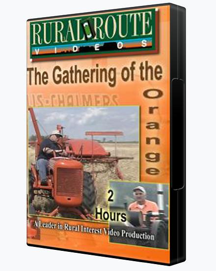 Gathering of the Orange