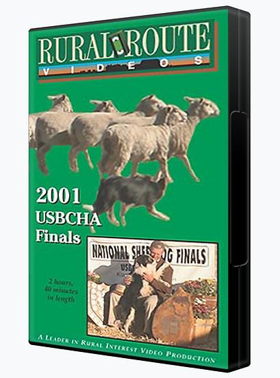 2001 USBCHA Finals