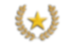 Hell Let Loose Training Camp Commander (Abinus) rank insignia close-up