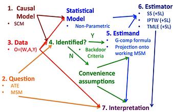 Causal Roadmap