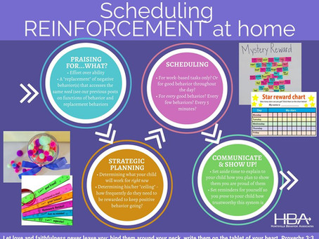 The Quarantine Series (Part 4) Scheduling Reinforcement at Home
