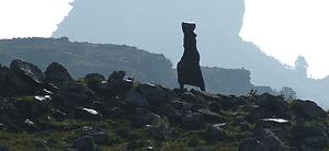kaalfoet-vrou-monument.png