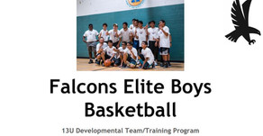 Falcons Elite Youth Basketball - 2018