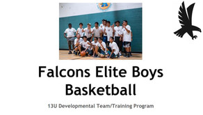 Falcons Elite Youth Basketball - 2018