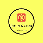 Pic In A Click Flyer.jpg