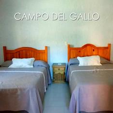 CAMPO DEL GALLO