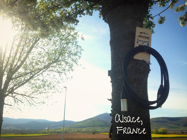 SHNOOR - Alsace, France