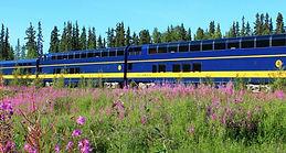 Alaska glass domed train.JPG