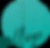 Logo-RiseUP-College-Transparent.png