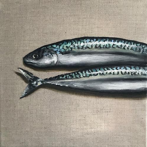 Mackerel. Oil on canvas. SOLD