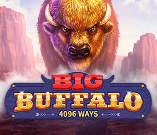 Big Buffalo