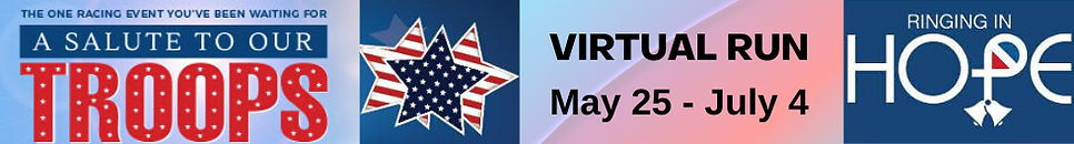 virtual banner.png