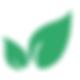 project divus-logo-za spletko.png