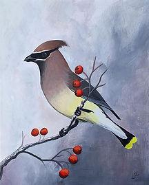 leahroseart_Or._#cedarwaxwing #bird #pai