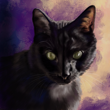 purpcatpng.png