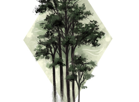 The Diamond Grove
