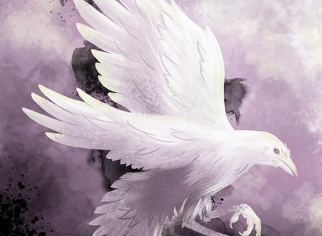 White Raven