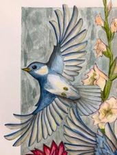 bluebirdacrylic.jpg