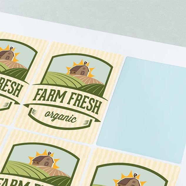 96x68mm rectangle gloss vinyl stickers b