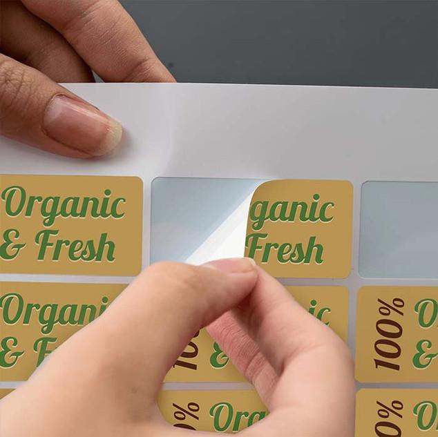 25x51mm rectangle gloss vinyl stickers b