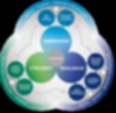 EFQM_MODEL_VIS_AW(livetype)-CZ.png