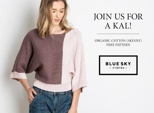 Spring Grove Sweater KAL with Blue Sky Fibers