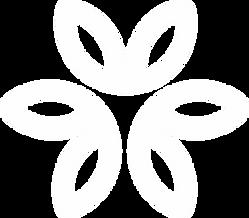 Identidade Visual - IOS v3.png