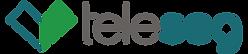 teleseg-logo-colorida.png