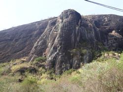 Boi Reto - Pedra Roxa