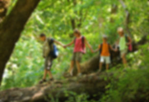 Kids in wilderness walking across log.jp